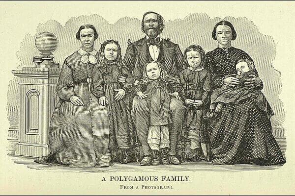 Мужская полигамия: взгляд со стороны